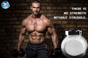 Choosing the Right Anabolic Steroids for Your Needs